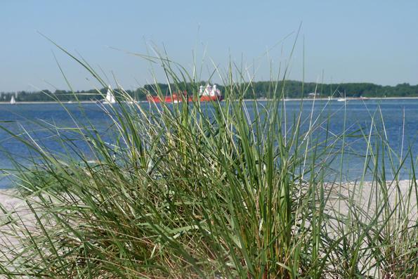 Die natürliche Dünenlandschaft und der feine Sand prägen bis heute die Ostseeküste in Schleswig-Holstein. (Foto: djd)