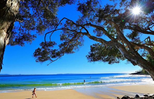 Nördlich von Brisbane beginnt Australia's Nature Coast. Dazu gehören die bekannte Sunshine Coast, die vor allem für die Walbeobachtung berühmte Fraser Coast, die weltgrößte Sandinsel Fraser Island sowie die südlichste Insel am Great Barrier Reef, Lady Elliot Island.