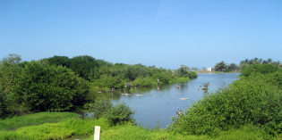 Unberührtes Paradies in Kolumbien: Der Naturpark Isla de Salamanca