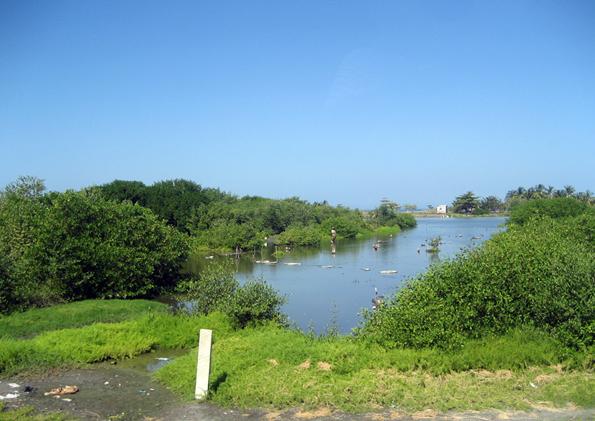 Naturpark Isla de Salamanca