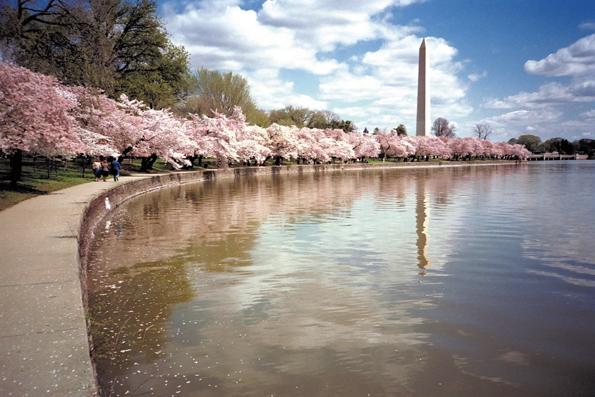 Das Washington Monument befindet sich auf der National Mall zwischen dem Lincoln Memorial und dem US-Kapitol.