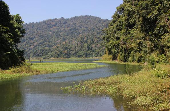 Der Royal Belum Rainforest besticht durch weitgehend völlig unberührte Natur und ist nur in Begleitung eines Rangers zugänglich. (Foto: Karsten-Thilo Raab)