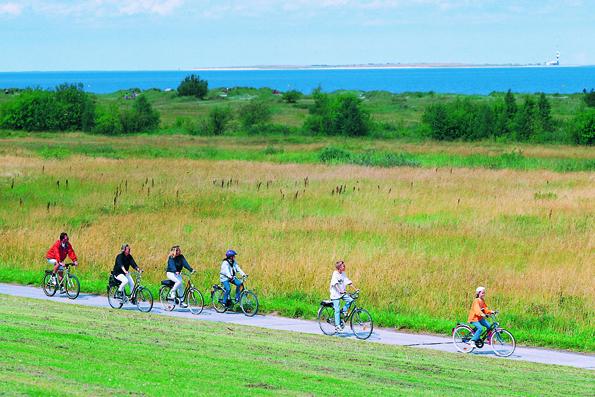 Die typische Weite der Landschaft des Wangerlandes bietet ideale Voraussetzungen für Fahrradurlauber. (Fotos: djd)
