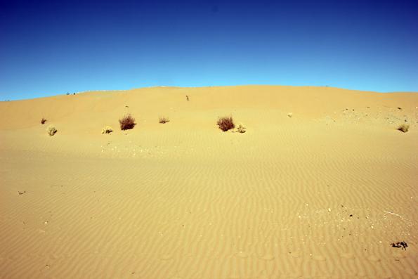 Die Region zwischen den Oasenstädten Chiwa und Bukhara wird komplett von der Kyzyl Kum Wüste geprägt. (Foto: Karsten-Thilo Raab)