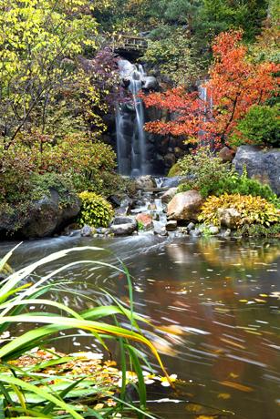 Ein Magnet nicht nur für Naturliebhaber: Die Anderson Gardens.