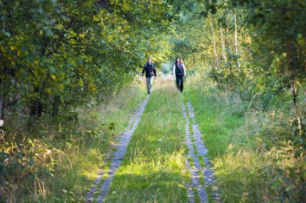 Bei einer Wanderung auf dem Kolonnenweg lässt sich im wahrsten Sinne des Wortes eine Grenzerfahrung machen. (Fotos: Frankenwald Tourismus)