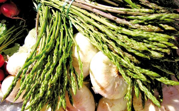 Wildspargel wird in Istrien in vielen Variationen serviert.
