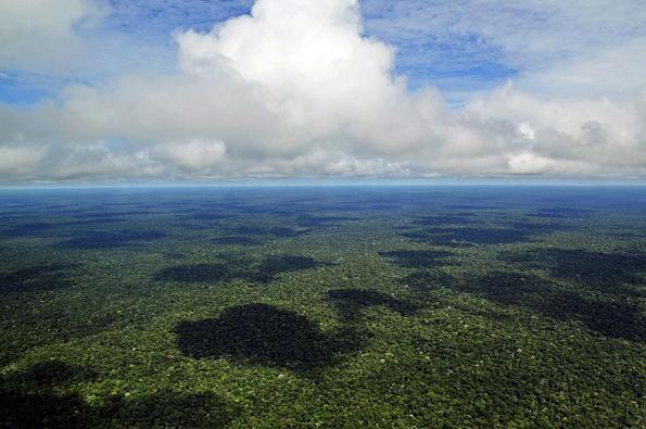 Die Amazionas-Region gilt als Lunge des Weltklimas, wird aber durch massive Abholzung und der Suche nach Bodenschätzen gefährdet. (Foto: Neil Palmer)