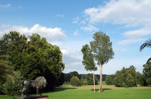 Blick über die Schlosswiese des Muskauer Parks. (Foto Astrid Roscher)
