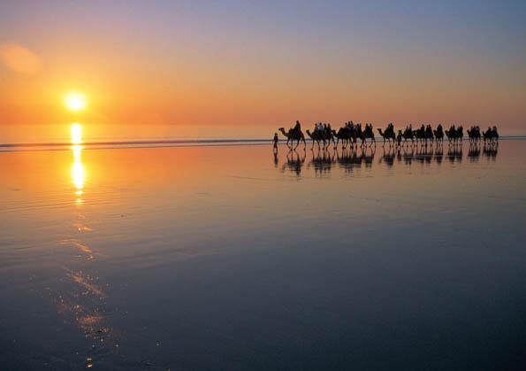 Zu den Dingen, die man in Westaustralien unbedingt erlebt haben sollte, gehört ein Kamelritt bei Sonnenuntergang über den berühmten Cable Beach.