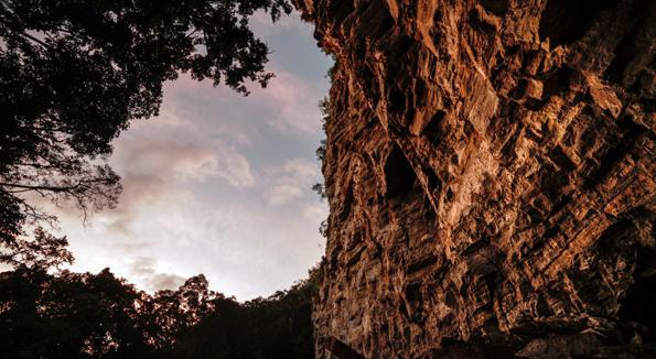 Faszinierende Naturerlebnisse erwartet die Besucht im Maya Biosphärenresrvat.