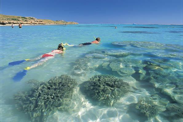 Nicht nur wie hier am Weltnaturerbe Ningaloo Reef lässt sich herrlich schnorcheln.