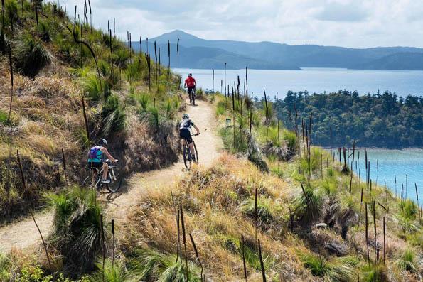 14 Kilometer lang ist die Mountainbikestrecke auf South Molle.