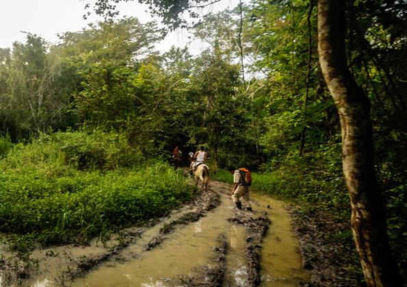 Der Maya Trek verläuft ebenfalls durch das Maya Biosphärenreservat und kombiniert Natur, Abenteuer und Archäologie.