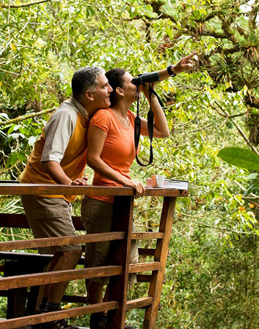 Beim Bordwatching lassen sich landesweit fast 900 Vogelarten in Augenschein nehmen.