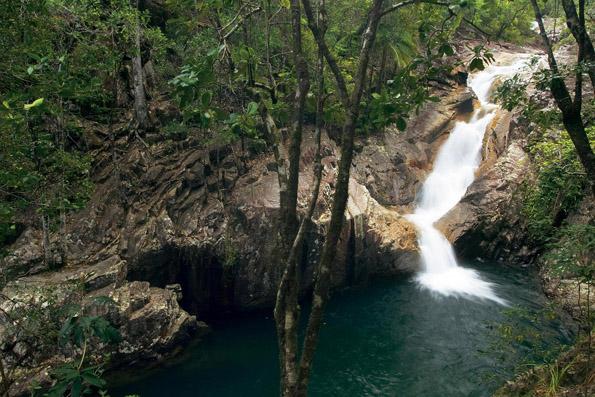 Einer der schönsten Landstriche in Queensland: Der Eungella Nationalpark.