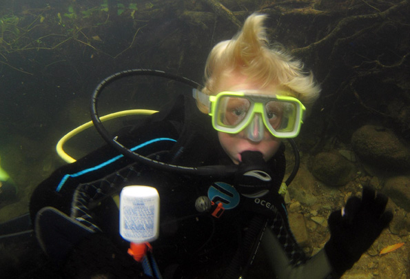 Im Eungella Nationalpark könne Naturliebhaber mit dem Platypus schwimmen und tauchen.