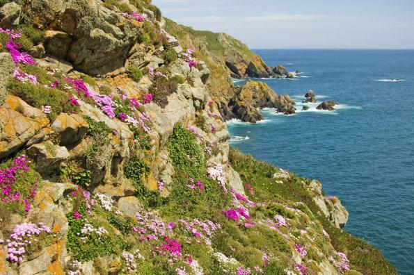 Die Kanalinsel Guernsey ist nicht nur ein grandioses Wanderrevier, sondern wartet im Sommer auch mit einem bunten Programm auf, das für Langeweile keine Zeit lässt. (Foto: Visit Guernsey')