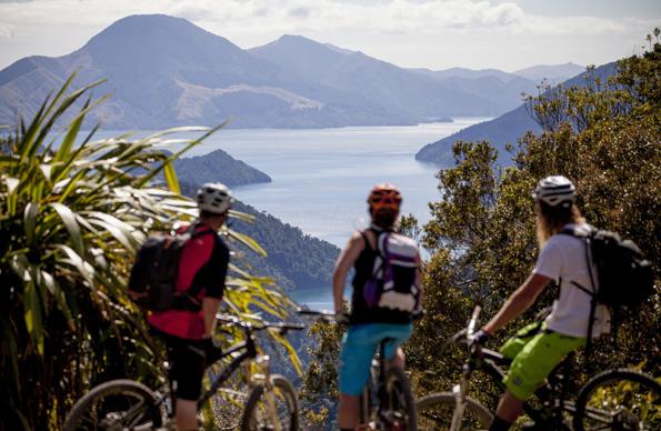 Ideal zum Mountainbiken: Die Region rund um Marlborough.