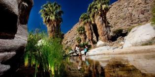 Unterwegs auf den Spuren der Agua-Caliente-Indianer im kalifornischen Palm Springs