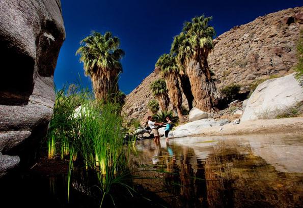 Eine Traumlandschaft und eine Landschaft zum Träumen: Die Indian Canyons vor den Toren von Plam Springs.