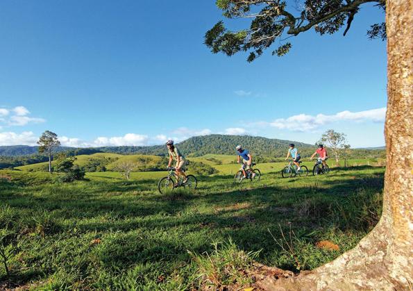 Bei einer Mountainbike-Tour - wie hier in Kuranda - lassen sich Kalorien gleich wieder abtrainieren.