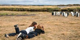 Tierisch starkes Chile: Wale und Pinguine in Sicht