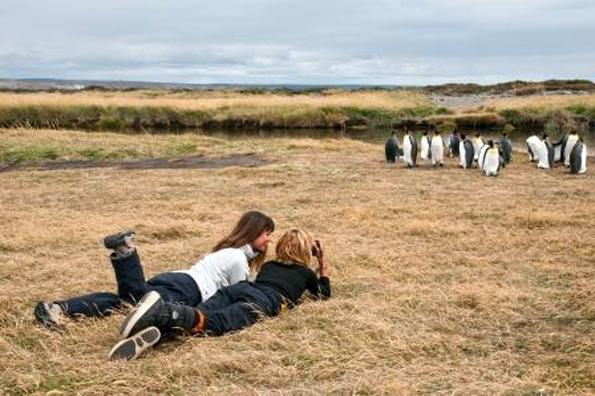 In Patagonien im Süden von Chile lassen sich Pinguine aus nächster Nähe in Augenschein nehmen.