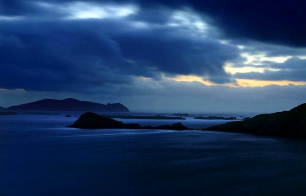 Ideale Bedingungen, um sich zu vermehren, finden die Kaltwasserkorallen vor der irischen Atlantikküste.