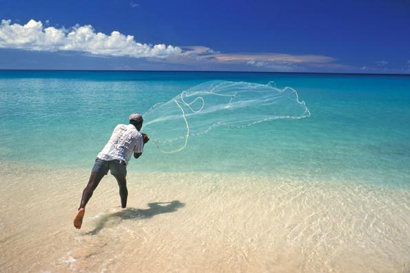 Die Fischer - wie hier auf Barbados - lassen sich bei ihrer Arbeit bereitwillig über die Schultern schauen. (Foto Barbados Tourism Authority)
