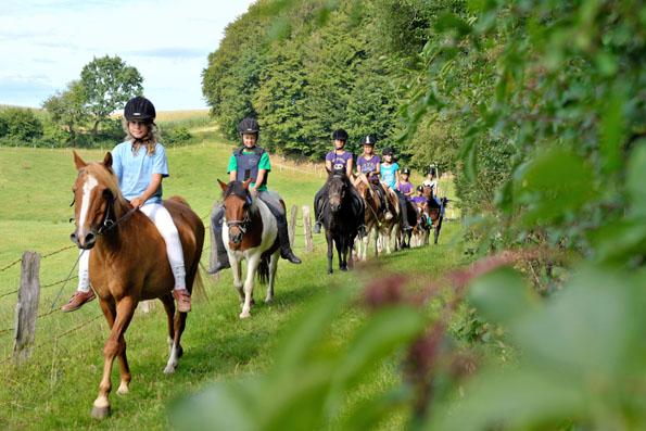 Die Natur rund um die Ostsee lässt sich per Pferd, per Rad oder auch auf ausgedehnten Wanderungen erkunden.