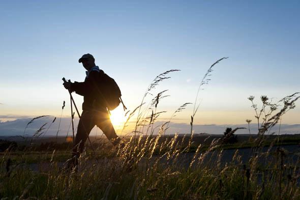 Die Wanderquickies im Frankental machen ihren Namen alle Ehre: sie sind kurz, schön und auch von wenig erfahrenen Wanderern gut zu bewältigen.