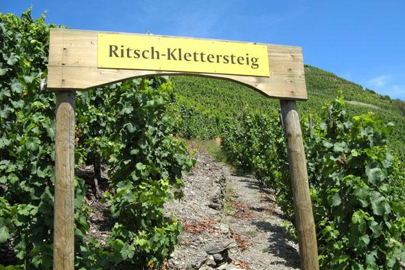 Auf 24 Rundwanderwegen - etwa dem Klettersteig Thörnicher Ritsch inmitten der Weinberge - können Wanderer die Urlaubsregion erkunden. (Foto: djd)