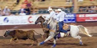 Beim Rodeo gilt: Bleib oben, wenn du kannst