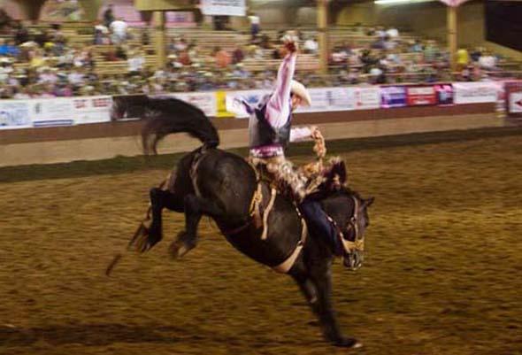 Nicht jedermanns Sache: der Tanz auf dem Pferd. (Foto Denise Chambers)
