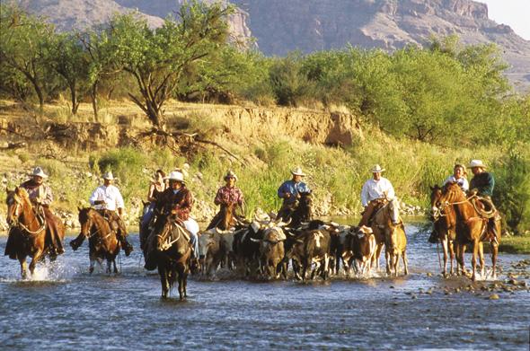 Für echte Hobby-Cowboys ist ein Ritt durchs Wasser  fast schon obligatorisch.