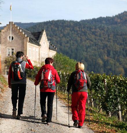 """Insgesamt ist der Premiumwanderweg """"Murgleiter"""" 110 Kilometer lang. Die beiden letzten Etappen läuft man im Nationalpark Schwarzwald. (Foto: djd)"""