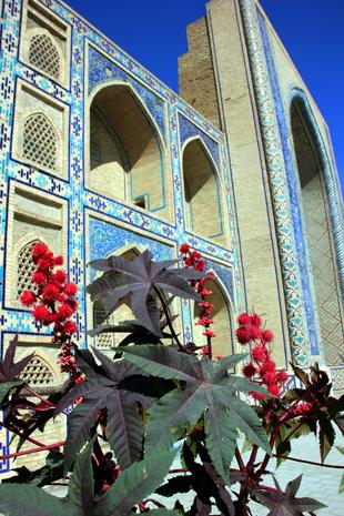 Farbenfroh und beeindruckend: die Ulugbek Medresse in Bukhara. (Foto Karsten-Thilo Raab)