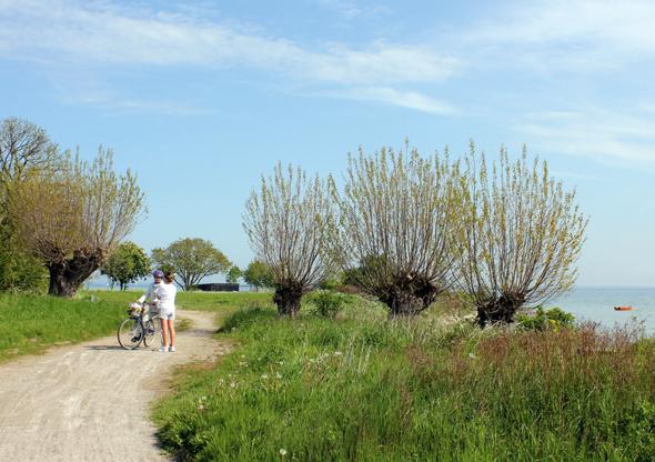 Entlang der Küstenlinie laden herrliche Radwege zu Entdeckungstouren ein. (Foto Bjørg Kiær)