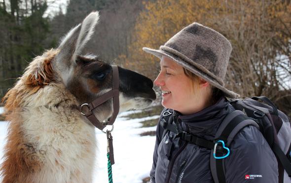 Während der Lamatour gehen die Tiere und Barbara Steinacher auch schon mal auf Schmusekurs. (Foto Karsten-Thilo Raab)