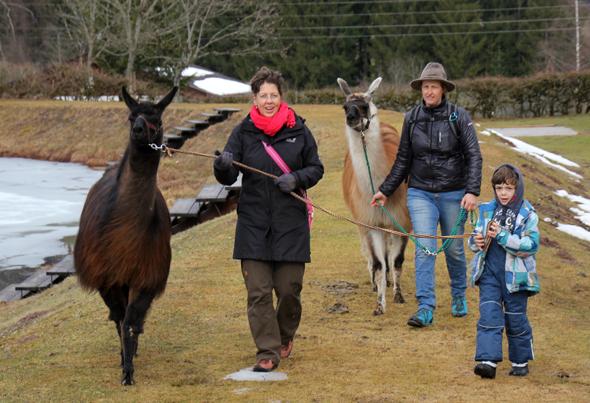 Lama-Touren sind eine perfekte Art, um Stress abzubauen und zu entschleunigen. (Foto Karsten-Thilo Raab)