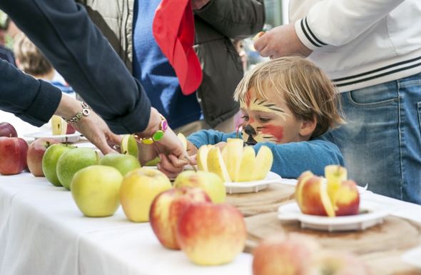 Dreizehn Apfelsorten reifen im alpin-mediterranen Klima von Südtirol und werden beim Genussfestival aufgetischt. (Foto Alex Filz)