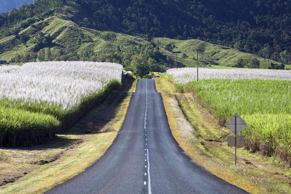 Einladend und faszinierend: die Straßen entlang des Whitsunday Coast Drive Trails wie hier zwischen Mackay und Eungella.