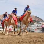 Wettrennen mit dem Toilettenhäuschen in Nevada