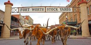 Unseren täglichen Viehtrieb gib uns heute: Western-Kult im texanischen Fort Worth