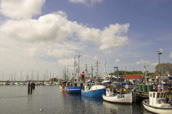 Im Hafen von Burgstaaken dümpeln die Fischerboote tagsüber vor sich hin. (Foto Stefan Sobotta)