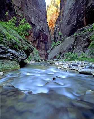 The Narrows gehören zu den schönsten Wanderwegen im Zion Nationalpark. (Foto Utah Office of Tourism)