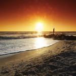 Sarasota – der Geheimtipp am Golf von Mexiko
