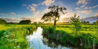 Naturerlebnisse pur im holländischen Groningen