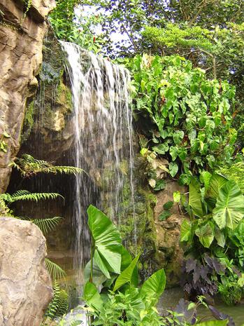 Liebvoll angelegt: Das Wasserfall in den Ginger Gardens in den botanischen Gärten von Singapur. (Foto Calvin Teo)